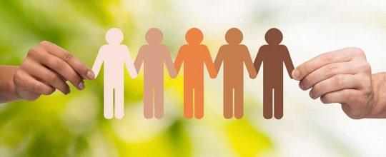 Desenvolvimento Social e Cidadania