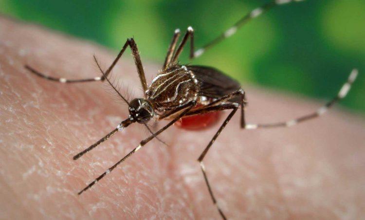 Secretaria de Saúde reúne com população e com diretores da prefeitura para tratar de prevenção e combate à Dengue