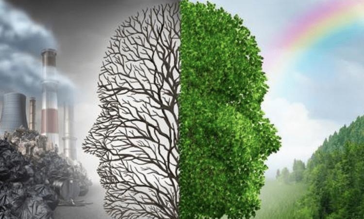 Diretoria de Meio Ambiente participa de criação de inventário sobre emissões de gases de efeito estufa