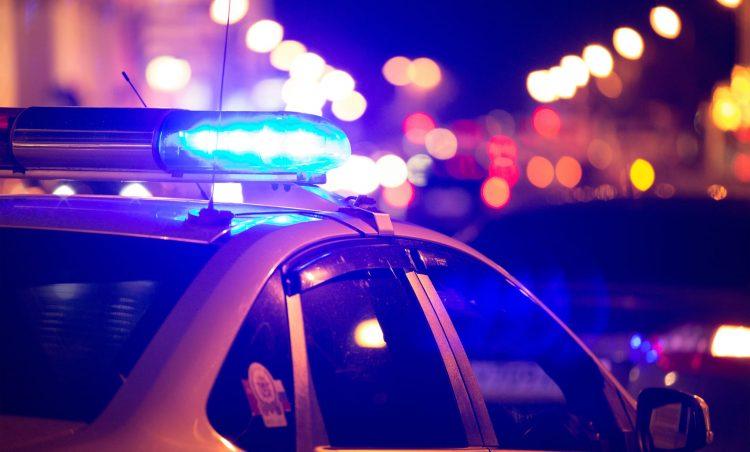 Polícia Municipal: confira o balanço das ações realizadas em 2019