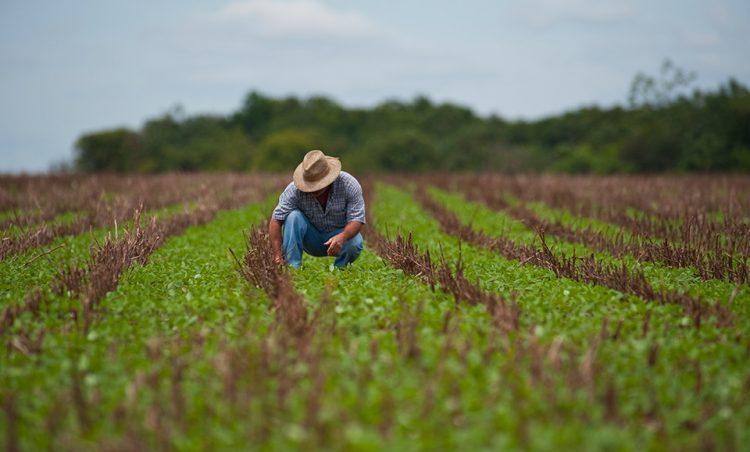 Agricultura do município é discutida em 2º Encontro de Produtores Rurais